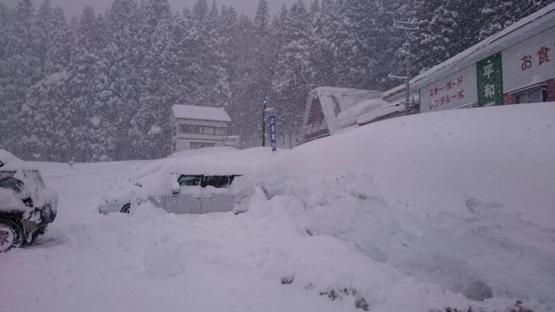 雪に埋もれている車